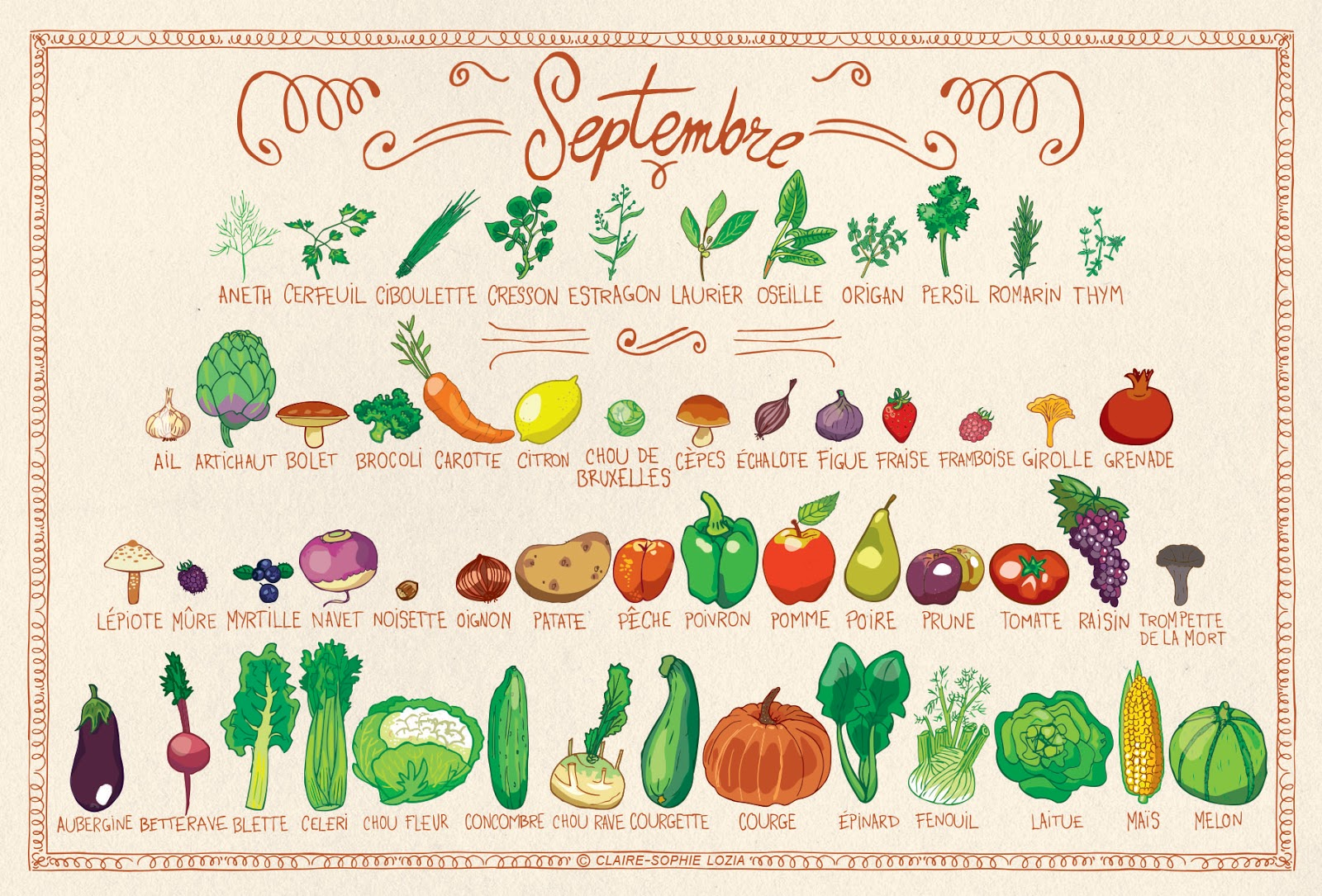 Fruits et légumes de septembre